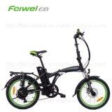 Elektrisches Fahrrad des neuen Falz-2016 (TDN16Z)