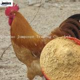 Additivo verde dell'alimentazione della polvere di Wakame per il pollo/pesci/maiale