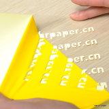 Color vívido Heat Transfer Film/Vinyl Width 50 Cm Length 25 M para Cotton