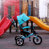 2016 Roterende Zetel de Met drie wielen van jonge geitjes met de Staaf van de Duw