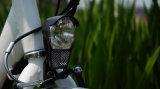 安い折りたたみのEn15194の電気バイクモデル