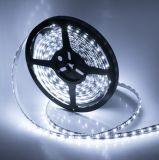 2835 singolo Color 120LED/M LED Strip con l'UL