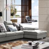 O sofá moderno da tela da sala de visitas ajustou-se (6062B)
