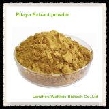 Polvo natural puro del extracto de Pitaya de la alta calidad