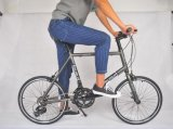 Stadt-Fahrräder mit Aluminiumlegierung-Fahrrad-Rahmen
