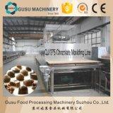 SGS precio de fábrica de la máquina de fabricación del chocolate (QJJ275)