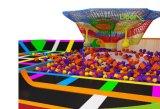 Aangepaste Gemaakte Trampoline het BinnenPark van de Trampoline
