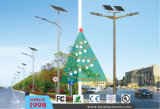 Zonne Street Light met Charge Controller