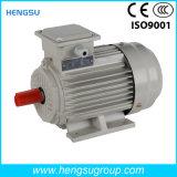 Электрический двигатель индукции AC Ye3 45kw-4p трехфазный асинхронный Squirrel-Cage для водяной помпы, компрессора воздуха