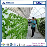 Mono comitato solare del prodotto a energia solare con silicone Uv-Resistente