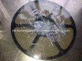 Mica/Vermiculiteの螺線形の傷のガスケット