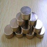 De fabriek verkoopt direct de Glanzende Kleine Magneet van het Neodymium