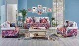 Moderne lederne Sofa-Möbel des neuen Modell-2016