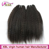 Заплетение волос Remy фабрики Kinky прямое бразильское