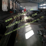 Struktur Steel Type Expansion Joint (Sold nach Singapur)