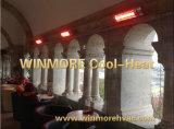 Infrared van het Zwembad/de Verwarmer die van de Wachtkamer met de Straalkachel van de Afstandsbediening met IP65 Waterdicht verwarmen