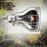 "60W 150W 200W 6.5 "" Terrarium Reptile Clamp Lamp con Wire Guard"