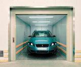 Preiswerter Innenbeweglicher Selbstaufzug des elektrischen Auto-2016