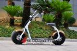 2016 Moda nuevo diseño de llantas Dos Scooter eléctrico Ciudad Coco