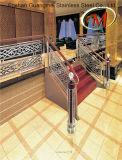 Cerca de acero inoxidable Escalera con alta calidad (GM-205)