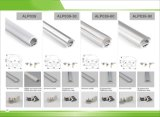 P/N 4229. 고품질 표면 또는 마운트 LED 알루미늄 단면도 밀어남 점화