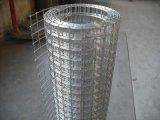Rete metallica saldata galvanizzata TUFFO galvanizzato/caldo dell'elettrotipia di buona qualità
