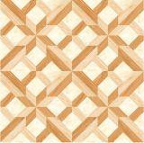 Azulejo de suelo rústico de la porcelana del material de construcción 600X600m m (QY6601)