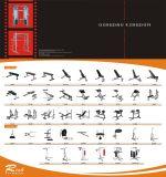 Strumentazione di ginnastica/cremagliera commerciale di vendita calda di Dumbbell delle file della strumentazione 2 di forma fisica