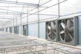 Material da lâmina de metal e ventilador de parede Ventilador de estufa de montagem