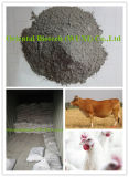 Graues Puder des Zufuhr-Zusatz-Dikalziumphosphat-18%/granuliert
