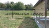 Verschiedene Größe galvanisierter Kettenlink-Maschendraht-Zaun