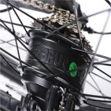 26inch隠された電池Rseb-106が付いている折る山Eのバイク