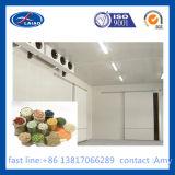 携帯用冷蔵室の小さい冷蔵室のフリーザー部屋