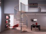 家のための鋼鉄木製の螺旋階段