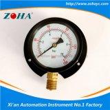 Manómetro general de la resistencia da alta temperatura con el borde