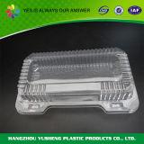 De transparante Container van de Doos van de Verpakking van de Bakkerij