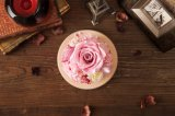 Fiore reale naturale di 100% Handmade per il regalo di compleanno di giorno del biglietto di S. Valentino della decorazione di festa