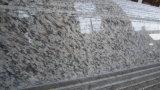 Brames de marbre beiges de Burdur/brames de marbre beiges/brames de marbre crèmes neuves de Marfil
