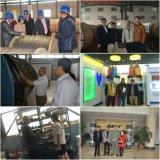 ASTM/BS galvanisierter Stahlstandarddraht Gsw