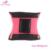 De speciale Gordel van de Taille van de Gymnastiek van Cincher van de Taille van de Geschiktheid van de Watermeloen Rode