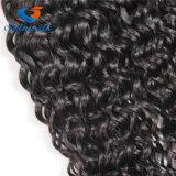 100%の人間の毛髪を編む新製品のバージンのブラジルの毛