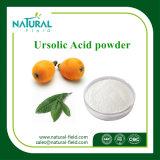 Loquat-Blatt-Auszug Ursolic Säure 5%-98%