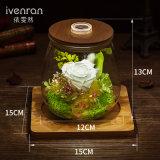 Ivenran Konstellation-frische Blumen-leuchtende Wunsch-Flasche für kreatives Geschenk und Dekoration