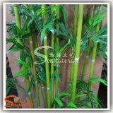 Albero di bambù fortunato artificiale verde quasi naturale