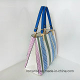 Fantastische Art-populäre Großverkauf PU Dame Handbags (LY060283)