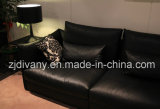 Sofá casero moderno de la tela de los muebles (D-74-E+B+D)