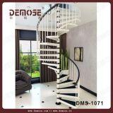 Modernes Eisen-gewundenes Treppenhaus (DMS-1071)