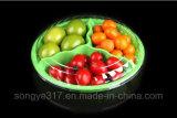 Wegwerfhaustier-Frucht des Gitter-drei und Salat-Kasten