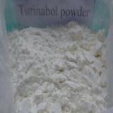 Azetat Turinabol CAS hochwertigste des 99% Reinheit-Steroid Puder-4-Chlorotestosterone: 855-19-6