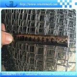 Vetex a galvanisé le treillis métallique de maillon de chaîne